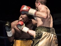 boxing,promo,toronto